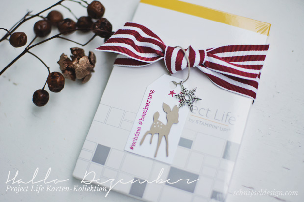 Advent-Stampin-Up-Gewinnspiel-schnipseldesign-osterreich-1-advent-project-life-hallo-dezember