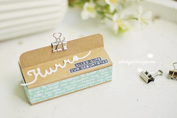 stampin-up-snackbox-karton-designerpapier-minzmakrone-grussworte-silhouettenspruche-schnipseldesign-osterreich-1