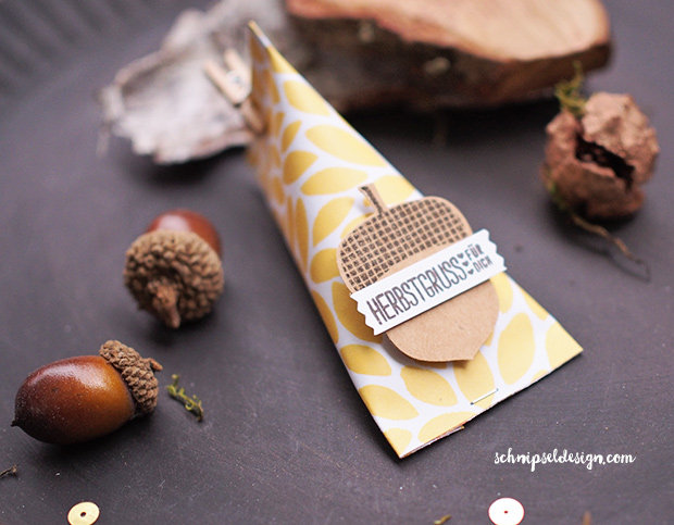 stampin-up-herbstgruesse-elementstanze-eichel-papier-am-waldrand-sour-cream-container-schnipseldesign-osterreich-1
