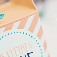 Anleitung: Strohhalm-Box